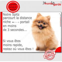 """Spitz Fauve, plaque humour """"distance Niche - Portail"""" 24 cm 3SEC"""