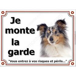 Shetland Merle Tête, Plaque portail Je Monte la Garde, panneau affiche pancarte, risques périls attention au chien
