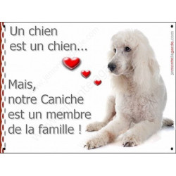 Caniche Blanc couché, Plaque Portail un chien est un chien, membre de la famille, pancarte, affiche panneau