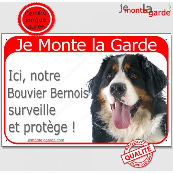 """Bouvier Bernois Tête, Plaque Portail rouge """"Je Monte la Garde, surveille protège"""" pancarte, affiche panneau photo"""