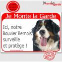 """Bouvier Bernois, plaque rouge """" Je Monte la Garde"""" 24 cm"""