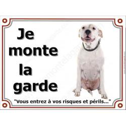 """Dogue Argentin sympa Assis, plaque portail """"je Monte la Garde"""" 4 tailles LUXE"""