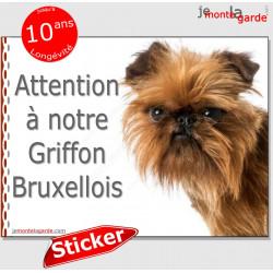 """Griffon Bruxellois, autocollant """"Attention au Chien"""" 16 x 12 cm"""