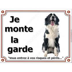 """Border Collie sympa Assis, Plaque portail """"Je Monte la Garde, risques périls"""" panneau affiche pancarte photo"""