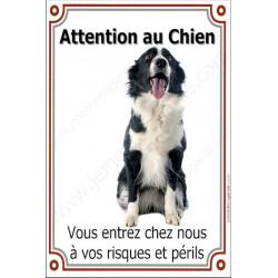 """Border Collie Assis, plaque portail """"Attention au Chien"""" 24 cm LUXE"""