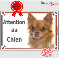 "Chihuahua roux orange poils longs, plaque portail ""Attention au Chien"" pancarte panneau fauve photo chocolat dilué"