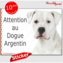 """Dogue Argentin, autocollant """"Attention au Chien"""" 16 x 12 cm"""