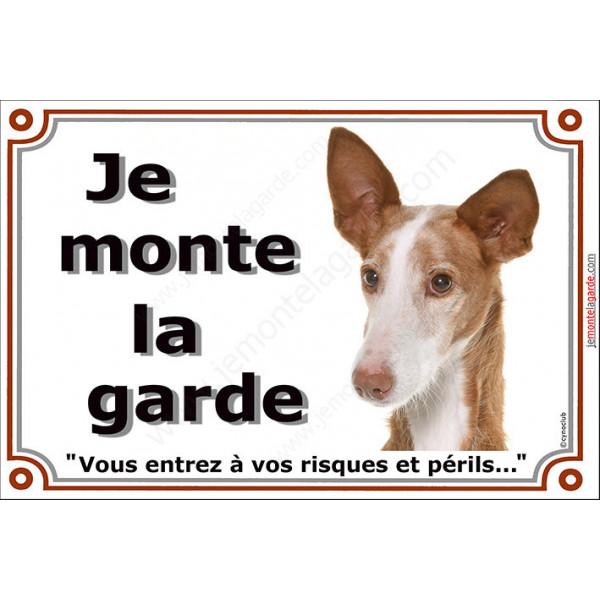 """Podenco d'Ibiza, plaque portail """"Je Monte la Garde, risques périls"""" pancarte panneau photo"""