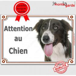"""Border Collie marron et blanc, plaque """"Attention au Chien"""" pancarte photo race, panneau portail"""