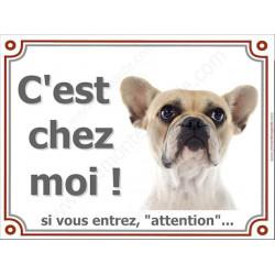 Bouledogue Français Caille Fauve Tête, Plaque portail Ici, C'est chez moi !   panneau affiche pancarte, Attention chien