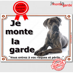 """Cane Corso gris bleu, plaque portail """"Je Monte la Garde, risques périls"""" pancarte panneau photo, Cane bringé couché"""