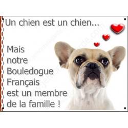 Plaque 16 cm LOVE, Membre de la Famille, Bouledogue Français Caille Fauve Tête
