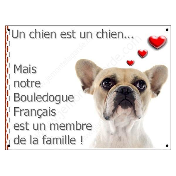 """Bouledogue Français Caille Fauve Tête, Plaque """"un chien est un membre de la famille, pancarte, affiche panneau photo idée cadeau"""