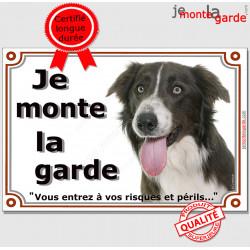 """Border Collie brun et blanc Tête, plaque portail """"Je Monte la Garde, risques et périls"""" panneau pancarte marron foie photo"""