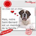 """St-Bernard, plaque """"Membre de la Famille"""" 24 cm LOVE C"""