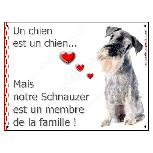 Schnauzer Poivre et Sel Assis, Plaque Portail un chien est un chien, membre de la famille, pancarte, affiche panneau