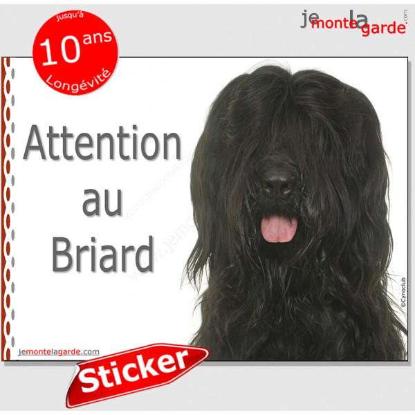 """Briard noir, Panneau autocollant """"Attention au Chien"""" Pancarte sticker photo adhésif Berger de Brie"""