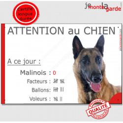 """Malinois, plaque humour """"Nombre de Voleurs, ballons, facteurs"""" 24 cm"""