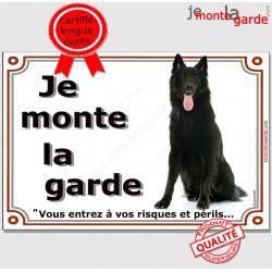 """Berger belge Groenendael, Plaque portail """"Je Monte la Garde, risques périls"""" panneau affiche pancarte photo"""