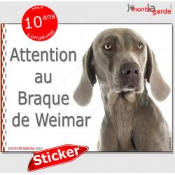 """Braque de Weimar, panneau autocollant """"Attention au Chien"""" pancarte sticker photo adhésif race boîte aux lettres portail entrée"""