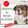 """Aussie, autocollant """"Attention au Chien"""" 16 x 12 cm"""