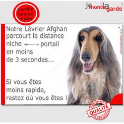 """Lévrier Afghan tricolore, plaque humour """"parcourt distance Niche - Portail moins 3 secondes !"""" Panneau photo drôle pancarte amus"""