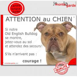 """Old English Bulldog, plaque humour """"Attention au Chien, Jetez Vous au Sol, secours, courage"""" pancarte photo drôle panneau marran"""