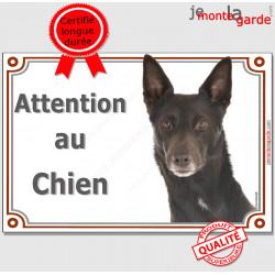 """Kelpie Australien Tête, plaque portail Attention au Chien"""" pancarte photo panneau Kelpy"""