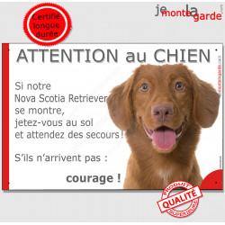 """Nova Scotia Retriever, plaque portail humour """"Jetez Vous au Sol, Attention au Chien, courage"""" pancarte photo drôle panneau marra"""