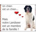 """Landseer Assis, plaque """"Membre de la Famille"""" 2 Tailles LOV A"""