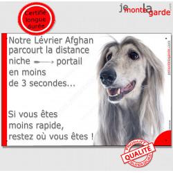 """Lévrier Afghan gris bleu, plaque humour """"parcourt distance Niche - Portail moins 3 secondes !"""" Panneau photo drôle pancarte amus"""