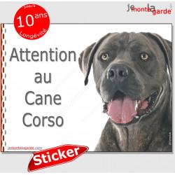"""Cane Corso Italiano gris bleu, panneau photo autocollant """"Attention au Chien"""" Pancarte adhésif sticker"""