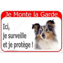 "Shetland Merle Tête, plaque rouge ""Je Monte la Garde"" 24 cm RED, A"