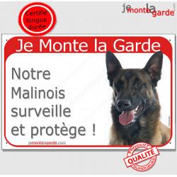 """Berger Belge Malinois couché, plaque portail rouge """"Je Monte la Garde surveille et protège"""" pancarte panneau photo"""