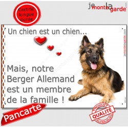 """Berger Allemand Poils Longs couché, plaque Attention """"un chien est membre famille"""" affiche panneau pancarte photo idée cadeau"""