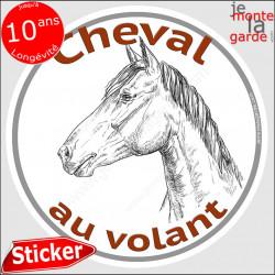 """sticker rond """"Cheval au Volant"""" humour absurde 14 cm"""
