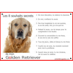 Plaque 24 cm CDT 8 Souhaits Secrets, Golden Retriever Tête
