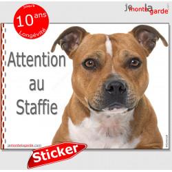 """Staffie fauve marron, sticker autocollant """"Attention au Chien"""" Staffordshire Bull Terrier, panneau adhésif photo lisse blanche"""
