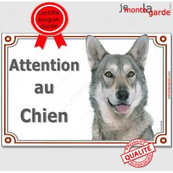 """Chien Loup de Saarloos tête, plaque portail """"Attention au Chien"""" pancarte panneau saarlos sarloos photo"""
