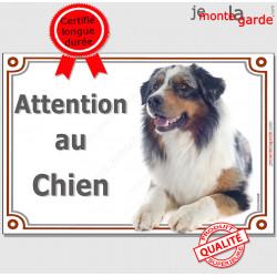 """Berger Australien bleu merle, plaque portail """"Attention au Chien"""" pancarte panneau photo aussie couché"""