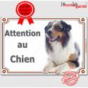 """Aussie bleu merle, plaque """"Attention au Chien"""" 24 cm LUXE C"""