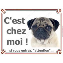 Carlin Tête, Plaque portail Attention C'est Chez Moi ! panneau affiche pancarte, chien