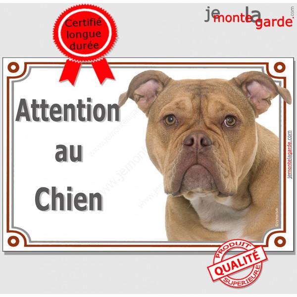 """Old English Bulldog, plaque portail """"Attention au Chien"""" pancarte panneau anglais photo race"""