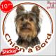 """Yorkshire Terrier, sticker autocollant rond """"Chien à Bord"""" disque photo York noir foncé adhésif vitre voiture"""