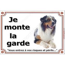 Berger Australien Bleu Merle couché, Plaque portail Je Monte la Garde, affiche panneau pancarte, risques périls