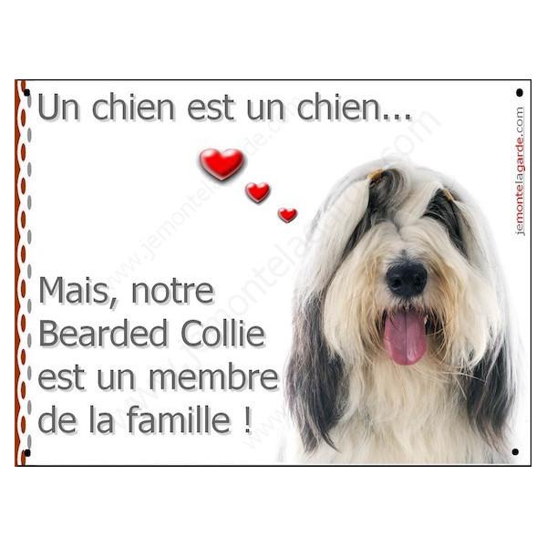 Bearded Collie Tête, Plaque Portail un chien est un chien, membre de la famille, pancarte, affiche panneau