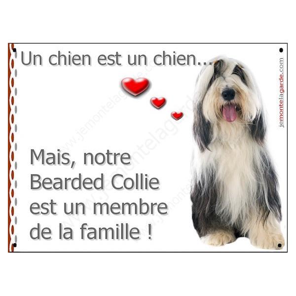Bearded Collie Assis, Plaque Portail un chien est un chien, membre de la famille, pancarte, affiche panneau