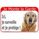 Plaque 24 cm RED, Je Monte la Garde, Golden Retriever Tête