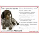 Plaque 24 cm CDT, 8 Souhaits Secrets, Braque Allemand Couché