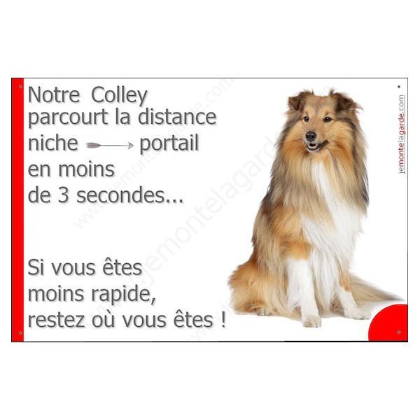 Colley Assis, Plaque Portail distance niche-portail 3 secondes, pancarte, affiche panneau